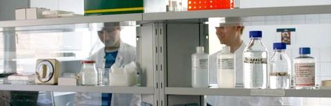 Pharmakologie - Im Labor.jpg
